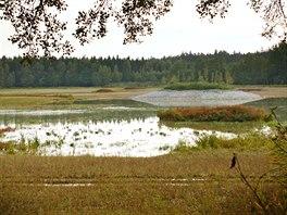 Rybník je vypuštěný, přesto se u hráze už letos lidé podle Vágnera koupali,...
