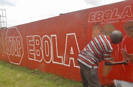 M�stn� liberijsk� mal�� maluje na venkov� obraz, kter� m� vzd�l�vat proti ���en� viru eboly (23. z��� 2014).