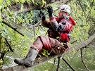 V Bulharech na Břeclavsku naopak hasiči ve svazích, u kterých hrozí sesuv půdy,...