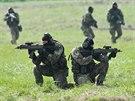 Elitní průzkumníci na Dnech NATO v Ostravě