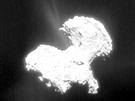 Složený snímek komety Čurjumov-Gerasimenko ze čtyř fotografií pořízených Rosettou. Má výrazně zvýšený kontrast, aby byl lépe vidět výtrysk vodní páry z komety.