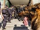 Budovy pardubické univerzity obsadily v pondělí desítky policistů.