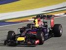 V ZAT��CE. Sebastian Vettel ve Velk� cen� Singapuru.