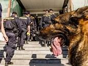 Budovy pardubické univerzity obsadily v pond�lí desítky policist�.