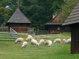 Valašská dědina představuje kromě bydlení i způsoby hospodaření