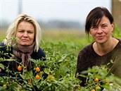 Hana Polanská (vlevo) s Alenou Dole�alovou p�stují pálivé papri�ky v p�ti...