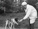 Vladimir Demichov nebyl šarlatánem, vědci jej považují za průkopníka transplantace, ale jeho pokusy na psech byly děsivé. Konstruoval monstra a přinášel utrpení.