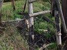 Požárem zničený dřevěný posed