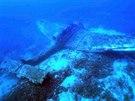 Podle potápěčů vypadá letoun z druhé světové války, jako kdyby na dně Jadranu...