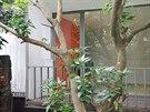 Industriální nádech stavby a tlumené tóny základních materiálů rozveselují oranžové prvky výmalby, dveřních křídel a dřevěného nábytku.