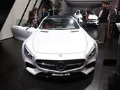 Mercedes-AMG GT je auto sn�. V�c ne� p�tisetko�ov� supersport m� v Pa��i...