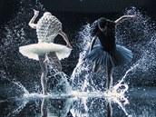 Z baletu Labutí jezero
