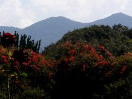 Ngongské pohoří