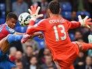 Fraizer Campbell, fotbalista Crystal Palace, se snaží překonat brankáře...