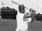 Jackie Robinson byl prvním profesionálním afroamerickým baseballistou.