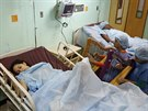 harfenistky se snaží nastávajícím matkám zpříjemnit porodní bolesti klasickou...