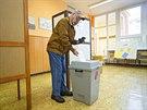 Druhé kolo senátních voleb na Základní škole Kvítková ve Zlíně. (17. října 2014)