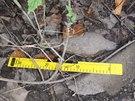 V sobotu dopoledne našli v Praze u Libeňského ostrova dělostřelecký granát ráže...