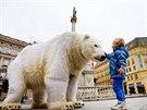 Na brněnském náměstí Svobody budil rozruch lední medvěd (15. října 2014).