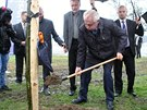 Prezident Miloš Zeman při sázení aleje v Novém Veselí na Žďársku.