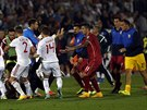 Albánští a srbští fotbalisté se poprali kvůli stržené vlajce, kvalifikační...