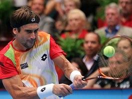 David Ferrer ve finále turnaje ve Vídni.