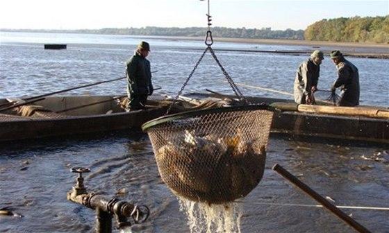 S podzimem p�ich�z� i ukon�en� ryb��sk� sezony v podob� tradi�n�ch v�lov�