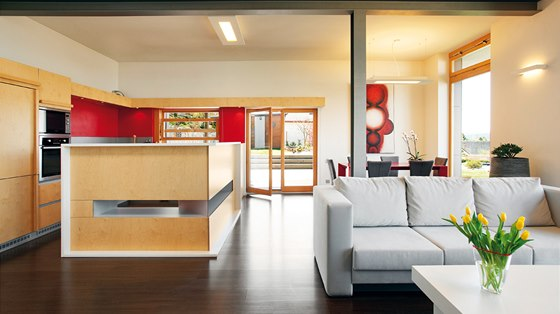 Středem společenské místnosti prochází ocelový nosník, který zde bylo nutné postavit kvůli statice domu. Zároveň odděluje obývací část od kuchyňské.