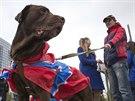 Pes s vlajkou Novoruska b�hem shrom�d�n� na Leninov� n�m�st� v Don�cku.