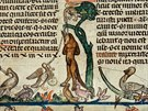 Obrazov� doprovod Smithfieldsk�ch rukopis� ned�v� historik�m klidn� sp�nek:...