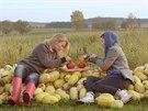Linda s Katkou ochutnávají plněnou dýni