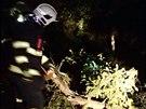 Tři desítky výjezdů evidují v sovislosti s nočním silným větrem hasiči v...