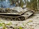 Tanky a těžká technika paradoxně pomáhají vzácným rostlinám a živočichům v...