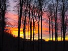 Západ slunce v chřibských lesích