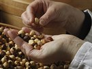 Pietro Ferrero vymyslel recept během války, kdy se nedalo sehnat kakao, což...
