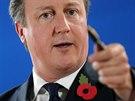 Britsk� premi�r David Cameron na summitu EU v Bruselu (24. ��jna 2014).