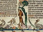Obrazový doprovod Smithfieldských rukopis� nedává historik�m klidný spánek:...