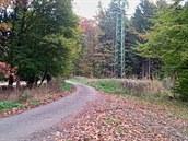 Část trasy vede po asfaltu.