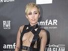 Miley Cyrusov� (Los Angeles, 29. ��jna 2014)