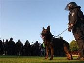 Po konci utkání m�la policie hodn� starostí p�ímo na trávníku, kam v hojném...