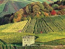 Vinice v okolí jsou na podzim obzvlášť krásné.