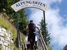 Jednou z atrakcí na Schynige Platte je alpská botanická zahrada.