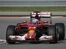 Fernando Alonso ve Velké ceně USA formule 1.