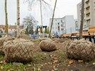 V Hradci roste nový park Skleněnka.