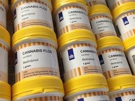 Dózy s léčebným konopím, které přivezla firma Czech Medical Herbs (7. listopadu 2014).