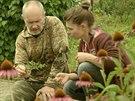 Jaká bylina udělá z mužů muže a žen ženy? Dědek kořenář to ví.