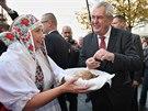 Prezidenta vítaly v Opavě ženy ve slezském kroji. Chléb Miloši Zemanovi podle vlastních slov moc chutnal. (11. listopadu 2014)