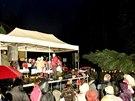 Šestnáctimetrová jedla ojíněná z bílovického podlesí ozdobí brněnské náměstí Svobody.