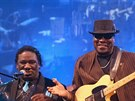 Mud Morganfield a Big Bill Morganfield (Blues Alive 2014, �umperk)