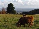 Halštrovské hory pod Kapellenbergem